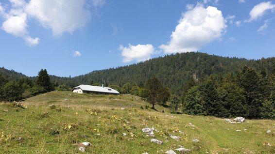 La Combe du Faoug - La Rippe - Vaud - Suisse