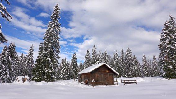 Le Chevreuil - Le Chenit - Vaud - Suisse