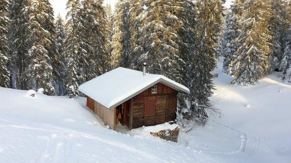 Chalet privé près de Druchaux - Berolle - Vaud - Suisse