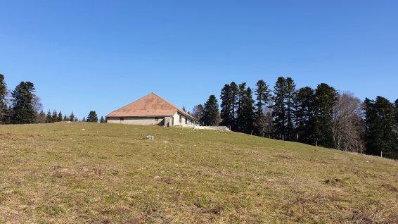 Prés de Joux – Marchissy - Vaud – Suisse