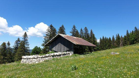 Couvert du Grand Essert du Vent - L'Abbaye - Vaud - Suisse