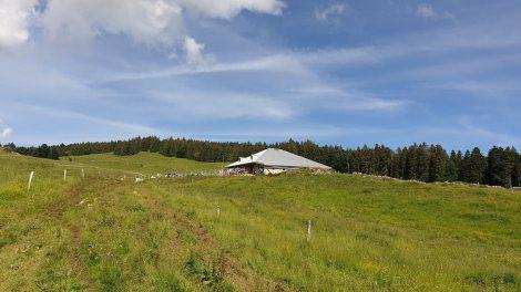 Les Coppettes - Arzier-Le Muids - Vaud - Suisse