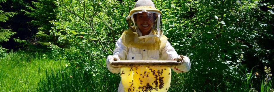 Beatriz with a top bar honey comb