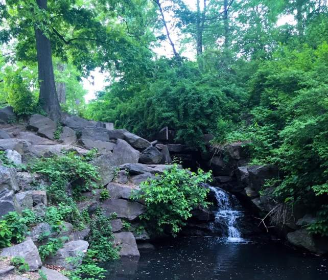 "A waterfall in the North Woods. - ""The Hidden Gems in Northern End of Central Park"" - Two Traveling Texans"
