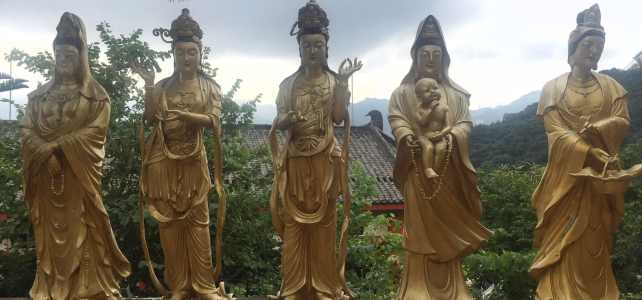 The Truth about the 10000 Buddhas Monastery
