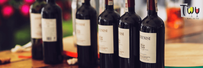 artigo_vinhos_portugal-frança-espanha-italia
