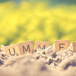 Newsletter – Celebrating Summer Milestones