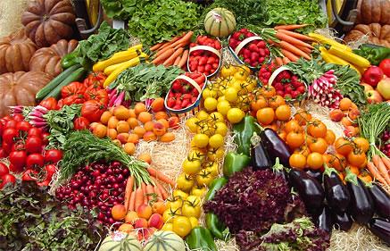 Resultado de imagen de Vegetarianismo