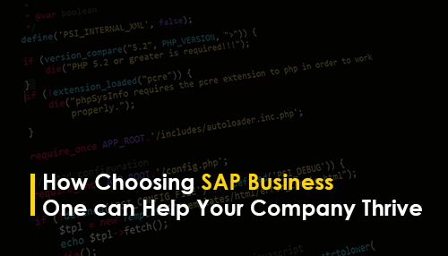 How Choosing SAP Business One can Help Your Company Thrive