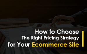 How to Choose The Right Pricing Strategy for Your Ecommerce…