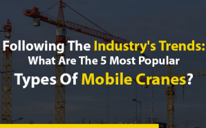 Following The Industry's Trends: What Are The 5 Most Popular…