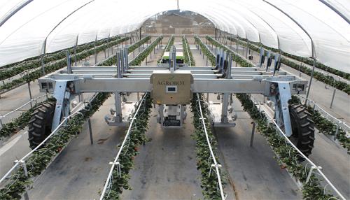 Agrobot E-Series