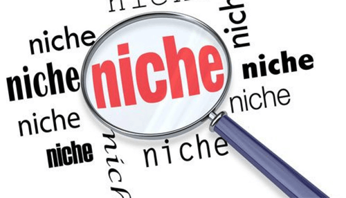 Searching and selecting the right niche