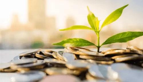 Top 5 green business ideas