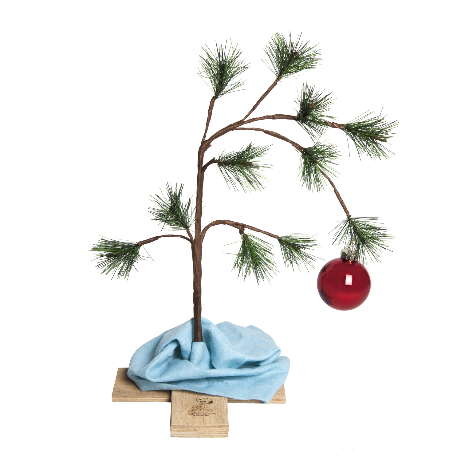 https://i2.wp.com/www.tylerdemarcofoundation.org/wp-content/uploads/2013/12/Charlie-Brown-Chrismas-Tree-With-Blanket-IMG_8035.jpg