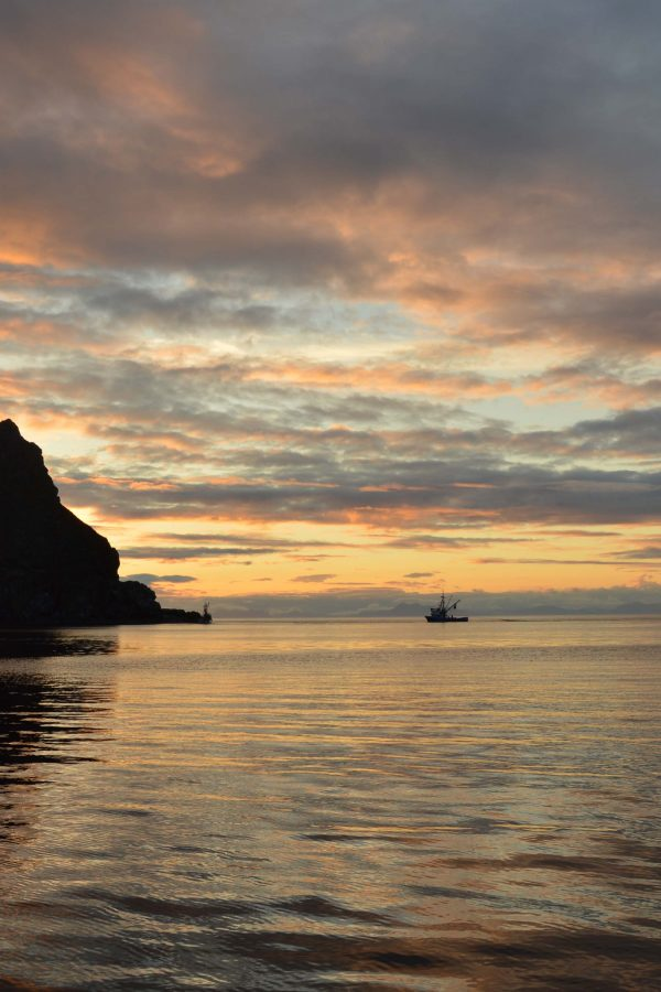 Do Something Worth Writing | Life is more than writing. Being brave in the face of the unknown | Sailing the Inside Passage | FishwifeWrites | Tyler-Rose Counts