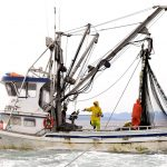 20 Great Gift Ideas for Commercial Fishermen