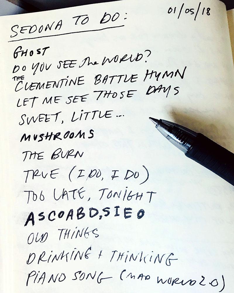 Tyler Stenson songwriting in Sedona