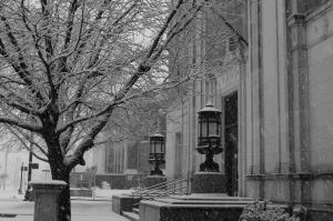 Old Tyler, Tx Snow Picture