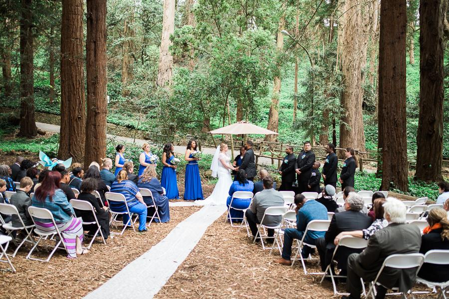 Jennifer_Victor_Stern_Grove-San_Francisco_Wedding-50