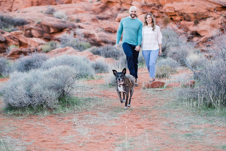a couple and their dog walk through the brush during Valley of Fire engagement session
