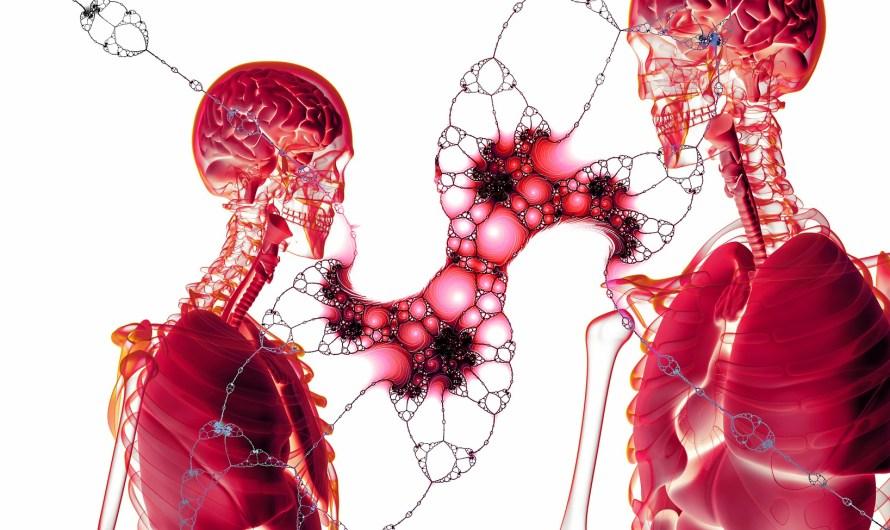 أنواع الخلايا في جسم الإنسان : الخلايا الجذعية العصبية خلايا العظام الجلد  وكريات الدم الحمراء والبيضاء