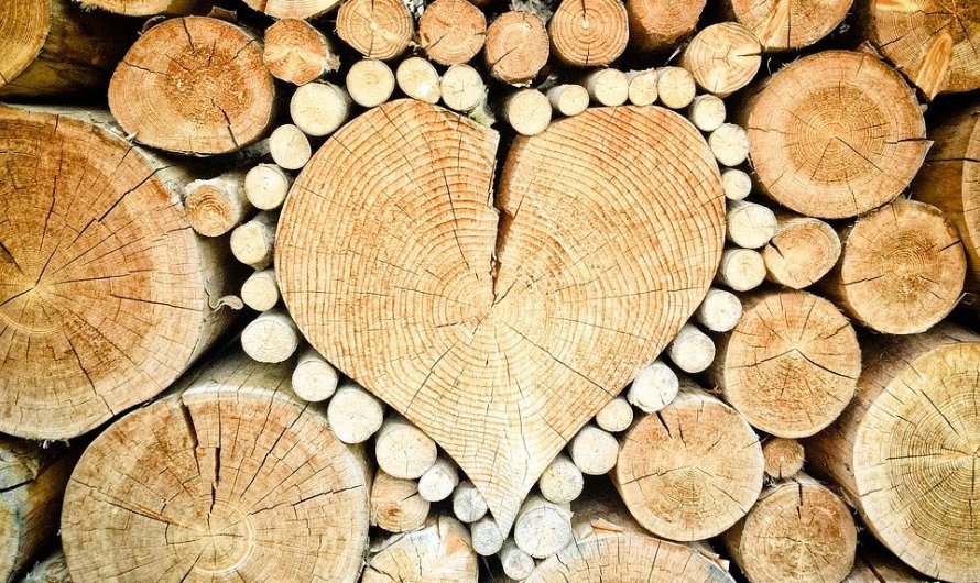 أفضل أنواع الخشب : الخشب الماهوجني الزان الصنوبر الجوز الموسكي البلوط الواوا السويدي التك