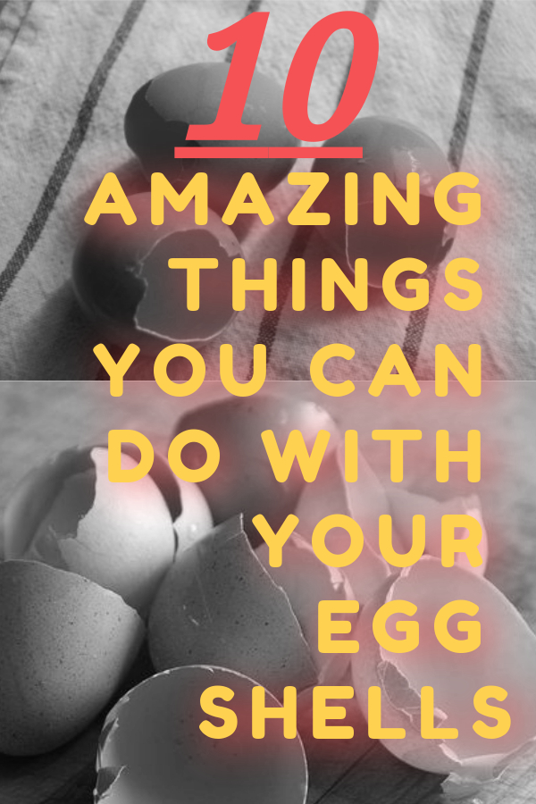 10 amazing things you can do with your eggshells!
