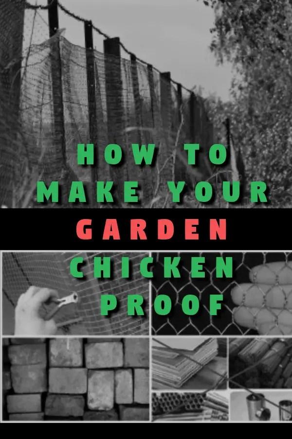 Chicken garden, Chicken Care, Chicken Keeping