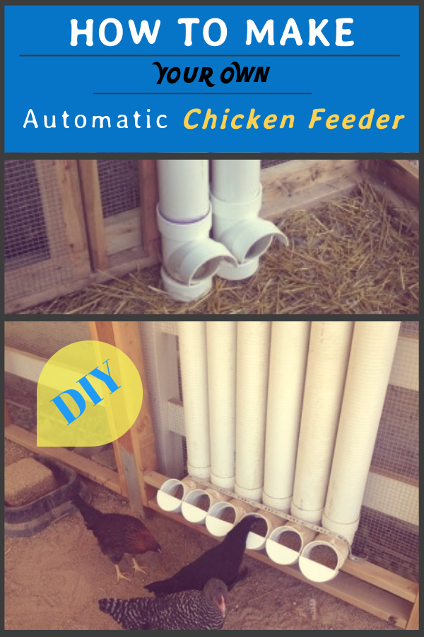 How to Make Your Own Automatic Chicken Feeder – 6 Easy Steps!!!