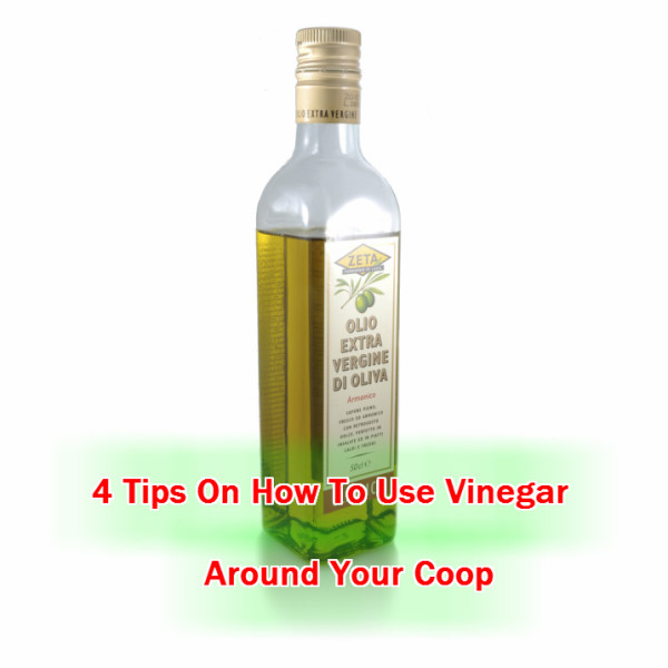 Cleaning Your Coop With Vinegar