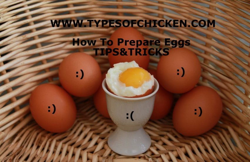 How To Prepare Eggs