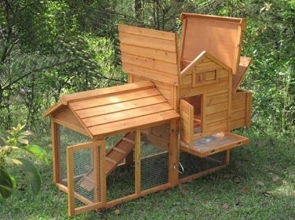 chicken coop compact