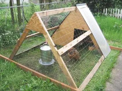 chicken coop wire