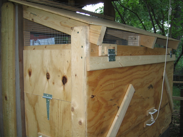 Ventilation In Your Coop