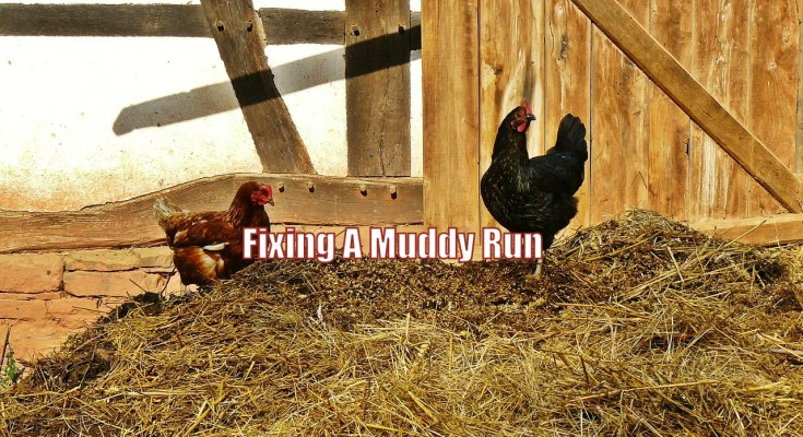 Fixing A Muddy Run