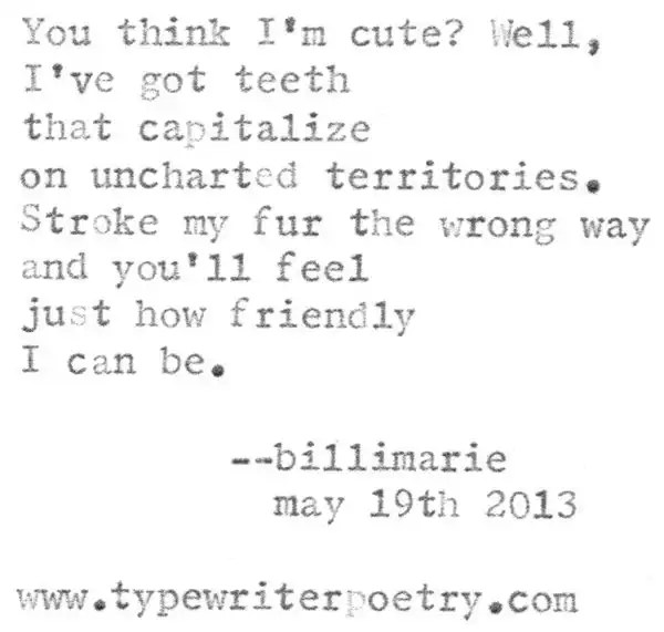 """Koala"" by billimarie (typewriter poetry)"