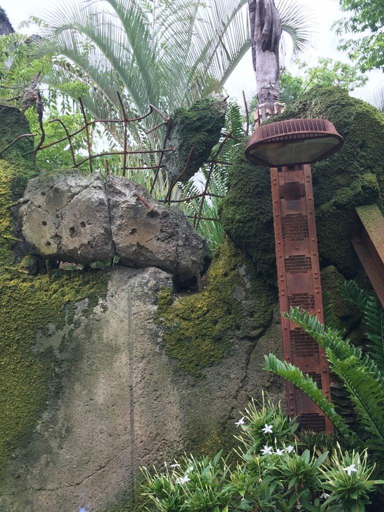 Exit of Flight of Passage, Pandora, World of Avatar