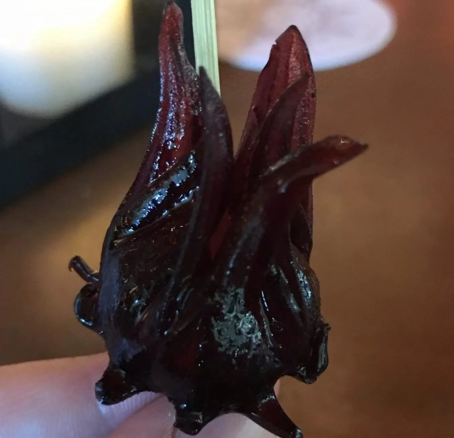 Syrup Soaked Hibiscus Flower