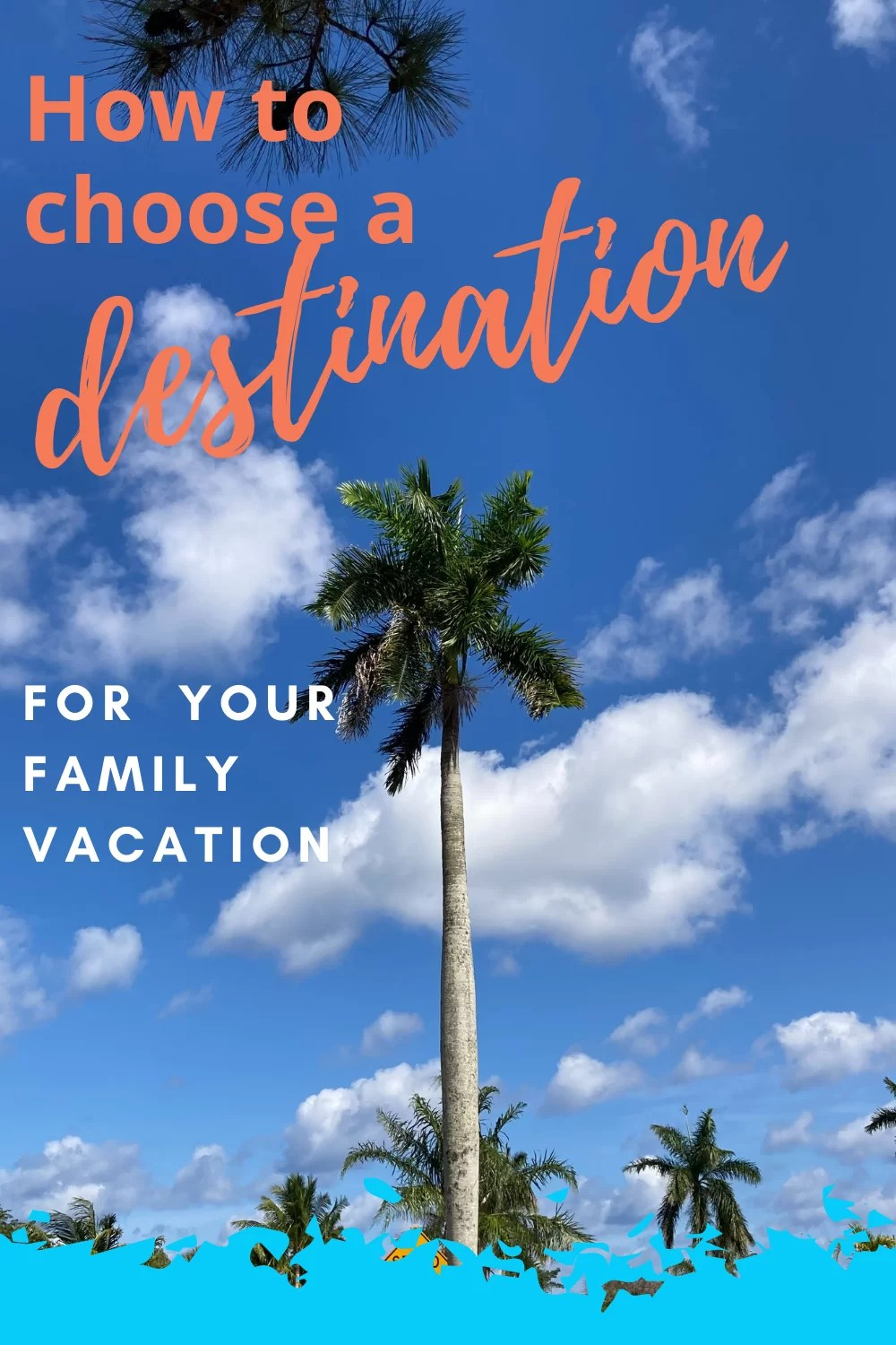 How to choose a destination for your famiily vacation over a palm tree