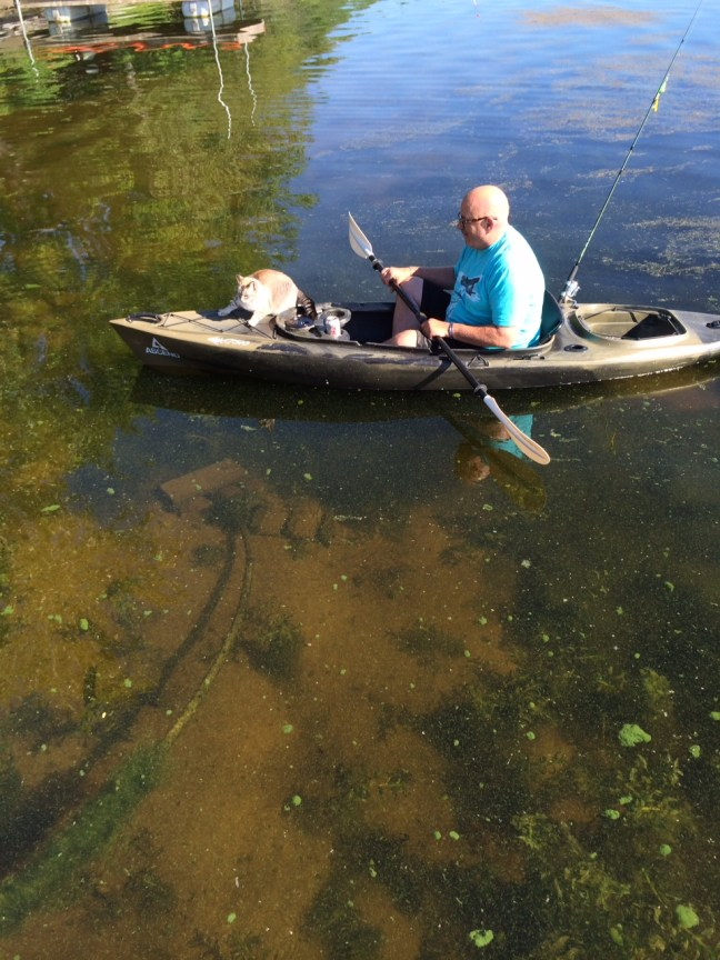 I Guess The Cat Doesn't Like The Kayak