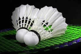 Badminton Workshop @ Benissa Sports Hall