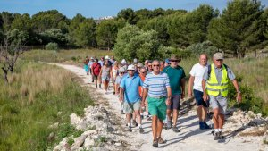 Healthy Walking - Lliber Zoo @ the Lliber Health Centre overflow car park at the end of Carrer Colon(m)