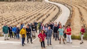 Healthy Walking @ BENITACHELL- ALDI to camis and tracks between MORAIRA and BENITACHELL