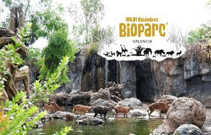 Travel_Bioparc