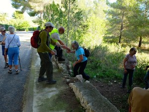 Walkers climbing the vine walls