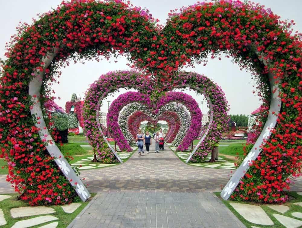 صور حديقة دبي ميراكل غاردن
