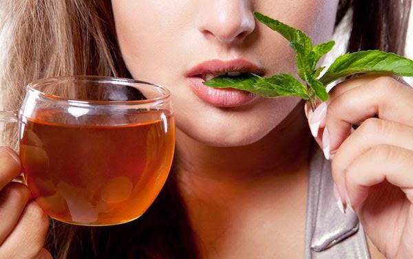شاي النعناع بالفليور منشط لعمل المعدة والامعاء