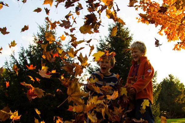 kids-in-leaves
