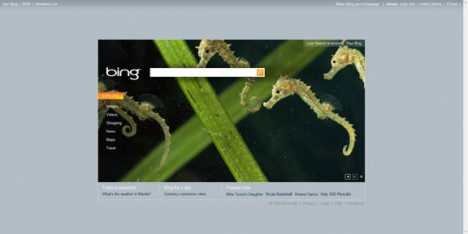 homepage_bing